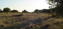 Terreno rustico Golmayo de 1500 m2