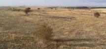 Parcela, terrenos entre Fuentecantos y Buitrago