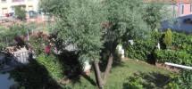 4 habitación/es – Casas – Venta – Soria – Pajaritos
