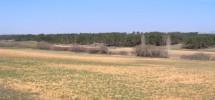 Una hectárea de terreno en Navalcaballo