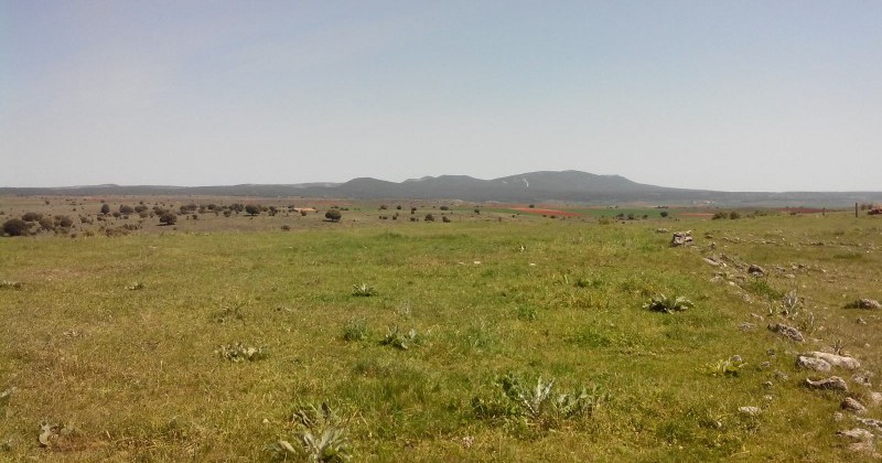 La Muela, pequeño e idílico pueblo a 30 km de soria