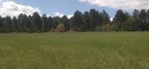 Finca de caza de 288 hectáreas