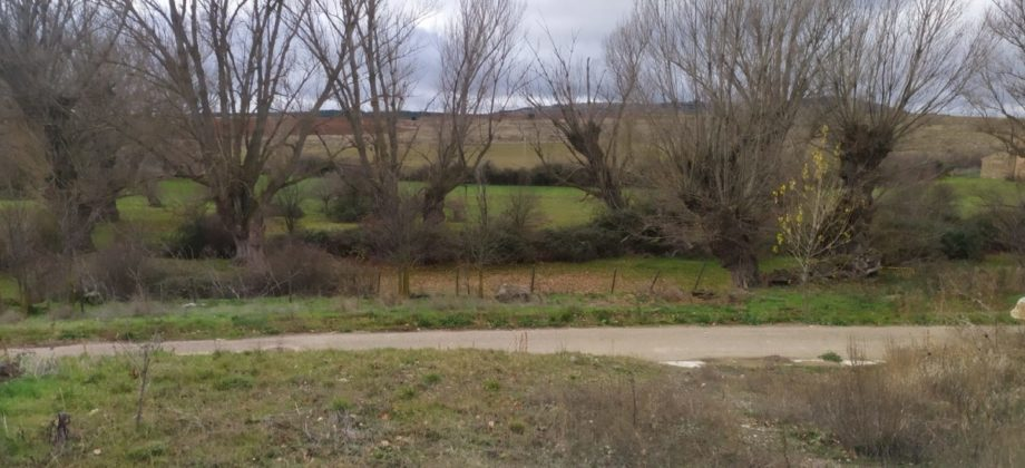 Terreno urbano en Fuentelfresno